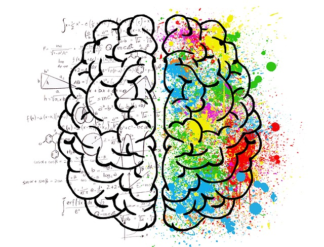 Illustration left brain and right brain